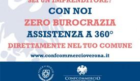 Consulenza Lago di Garda 2019